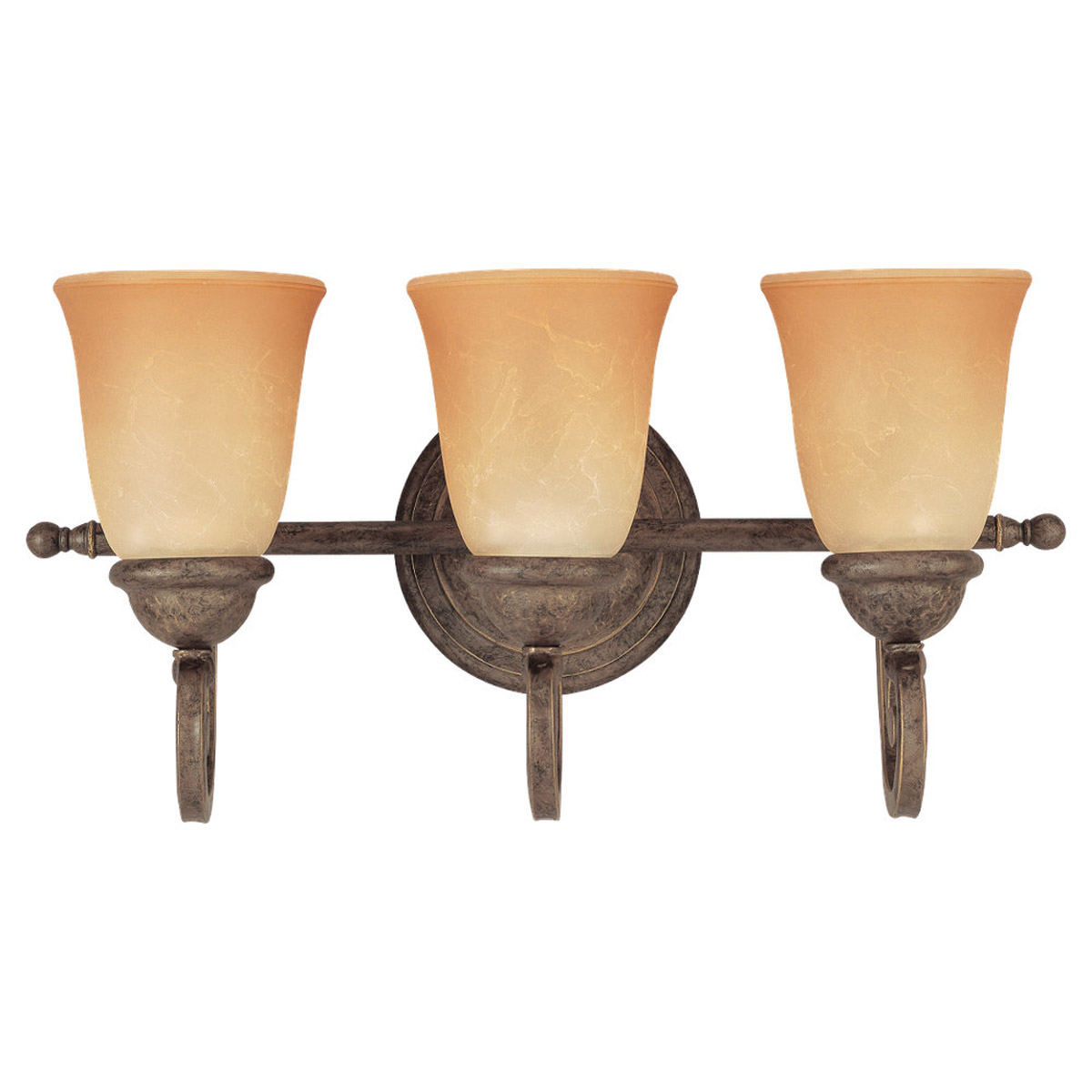 Sea Gull Lighting Brandywine 3 Light Bath Vanity in Antique Bronze 49033BLE-71 photo