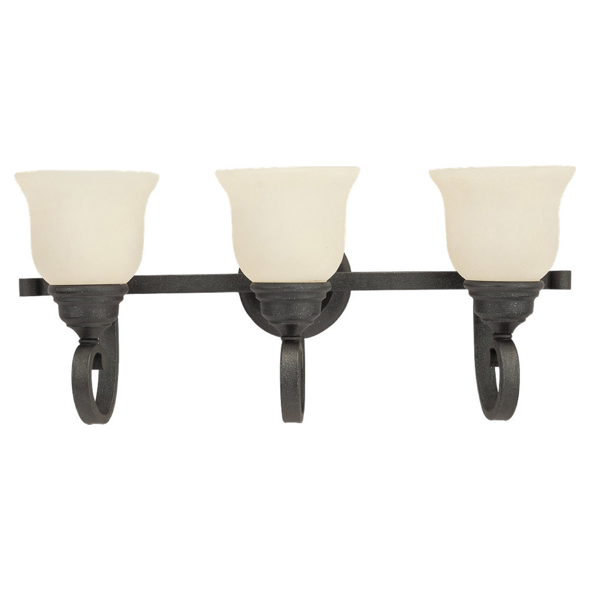 Sea Gull Lighting Serenity 3 Light Bath Vanity in Weathered Iron 49060BLE-07