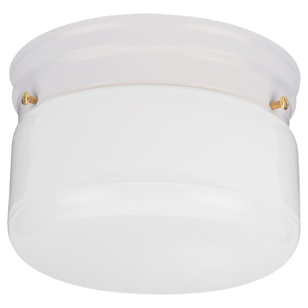 Sea Gull Lighting Economy Flush Mount 1 Light Flush Mount in White 5321-15