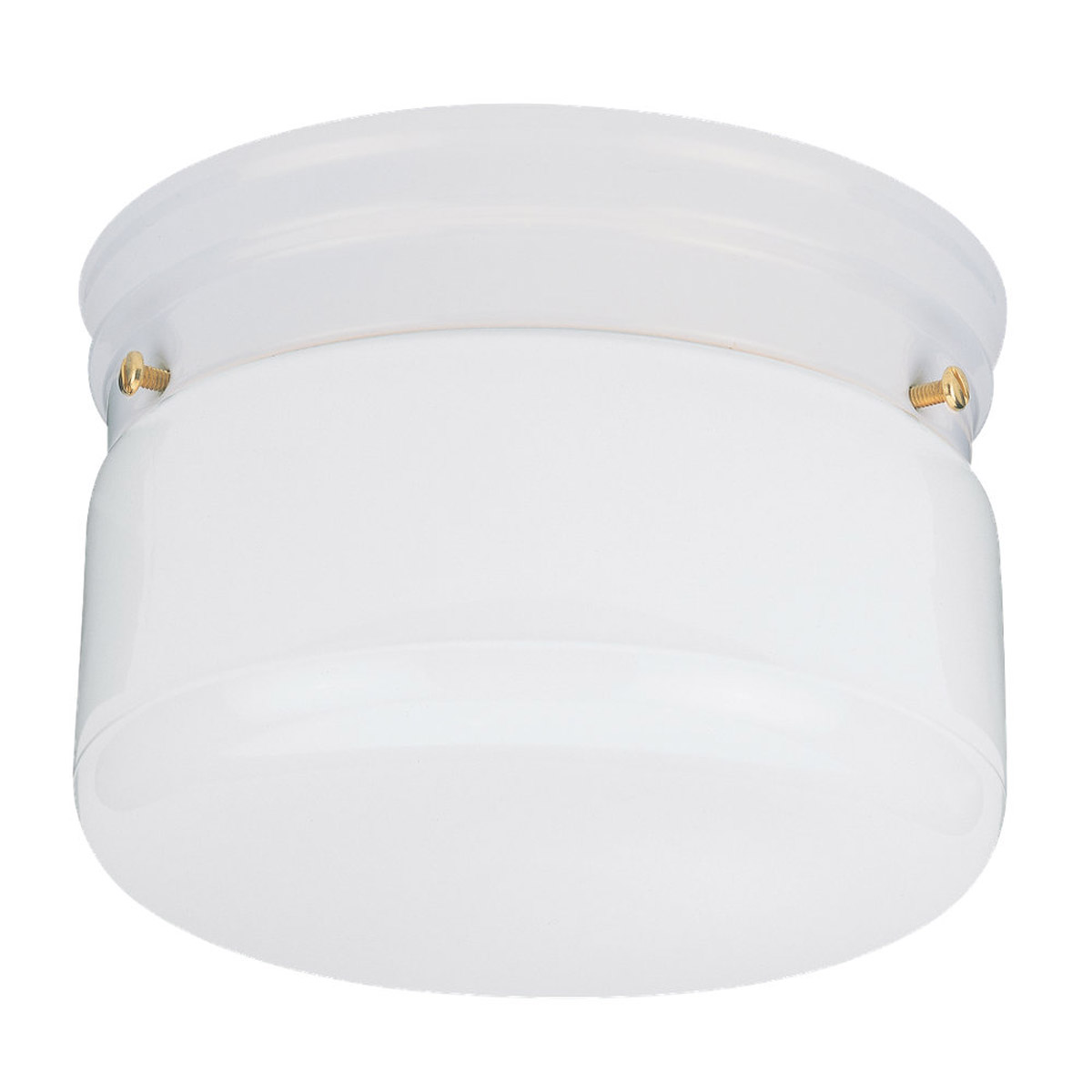 Sea Gull Lighting Economy Flush Mount 2 Light Flush Mount in White 5323-15 photo
