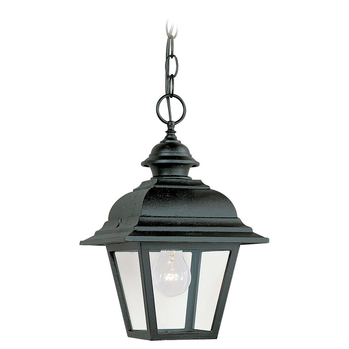Sea Gull Lighting Bancroft 1 Light Outdoor Pendant in Black 6016-12 photo