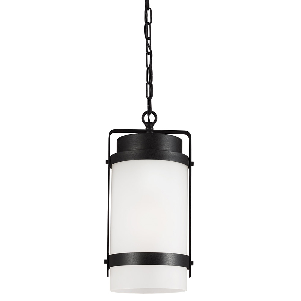 Sea Gull Bucktown 1 Light Outdoor Pendant in Black 6222401-12