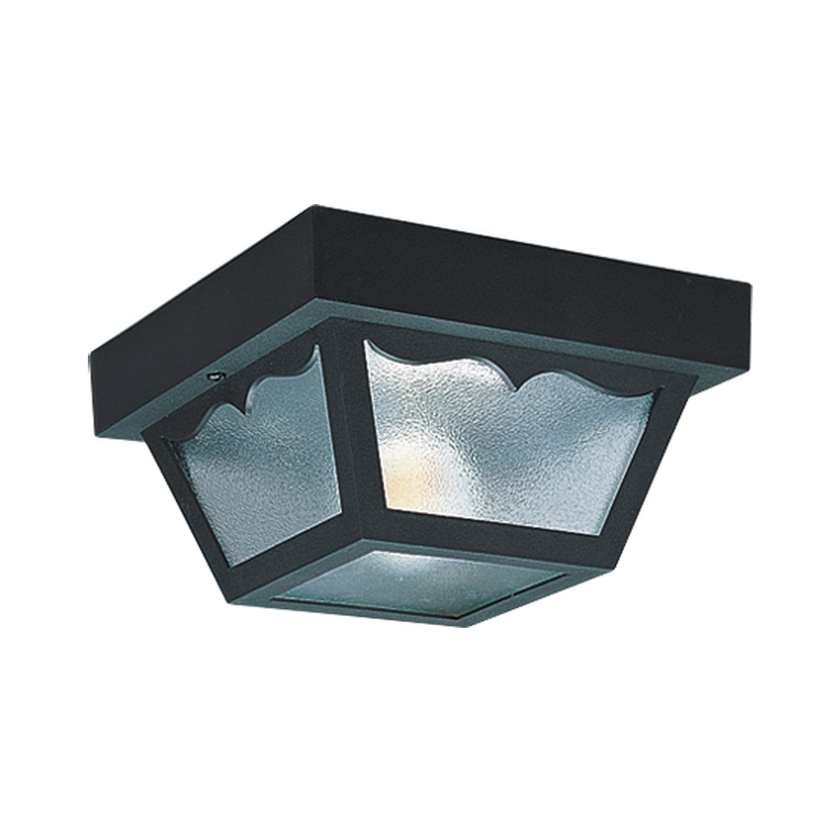 Sea Gull 7569-32 Signature 2 Light 10 inch Clear Outdoor Ceiling Fixture in Black photo