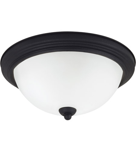 Sea Gull 79364BLE-839 Signature 2 Light 13 inch Blacksmith Flush Mount Ceiling Light in Satin Etched Glass photo