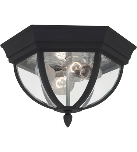 Sea Gull 78136-12 Bakersville 2 Light 13 inch Black Outdoor Ceiling Fixture photo