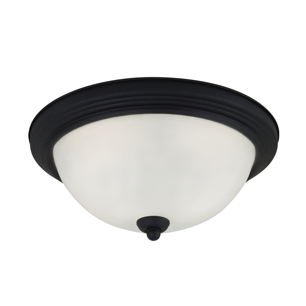Sea Gull Oslo 2 Light Flush Mount in Blacksmith 79164BLE-839 photo