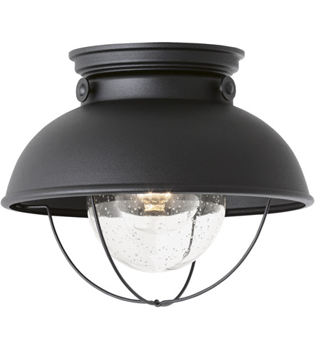 Sea Gull Lighting Sebring 1 Light Outdoor Ceiling Lantern in Black 8869-12 photo