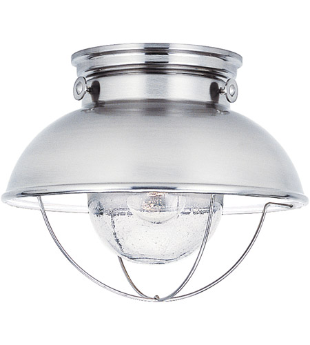 Sea Gull Lighting Sebring 1 Light Outdoor Ceiling Lantern in Brushed Stainless 8869-98