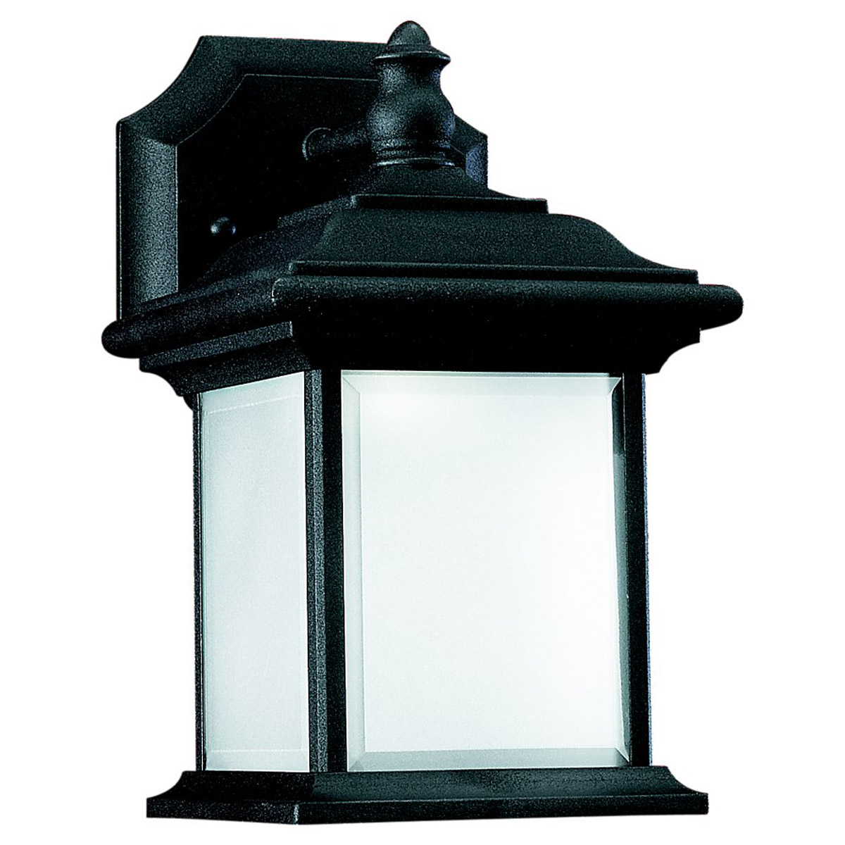 Sea Gull 89101BLE-12 Wynfield 1 Light 10 inch Black Outdoor Wall Lantern photo