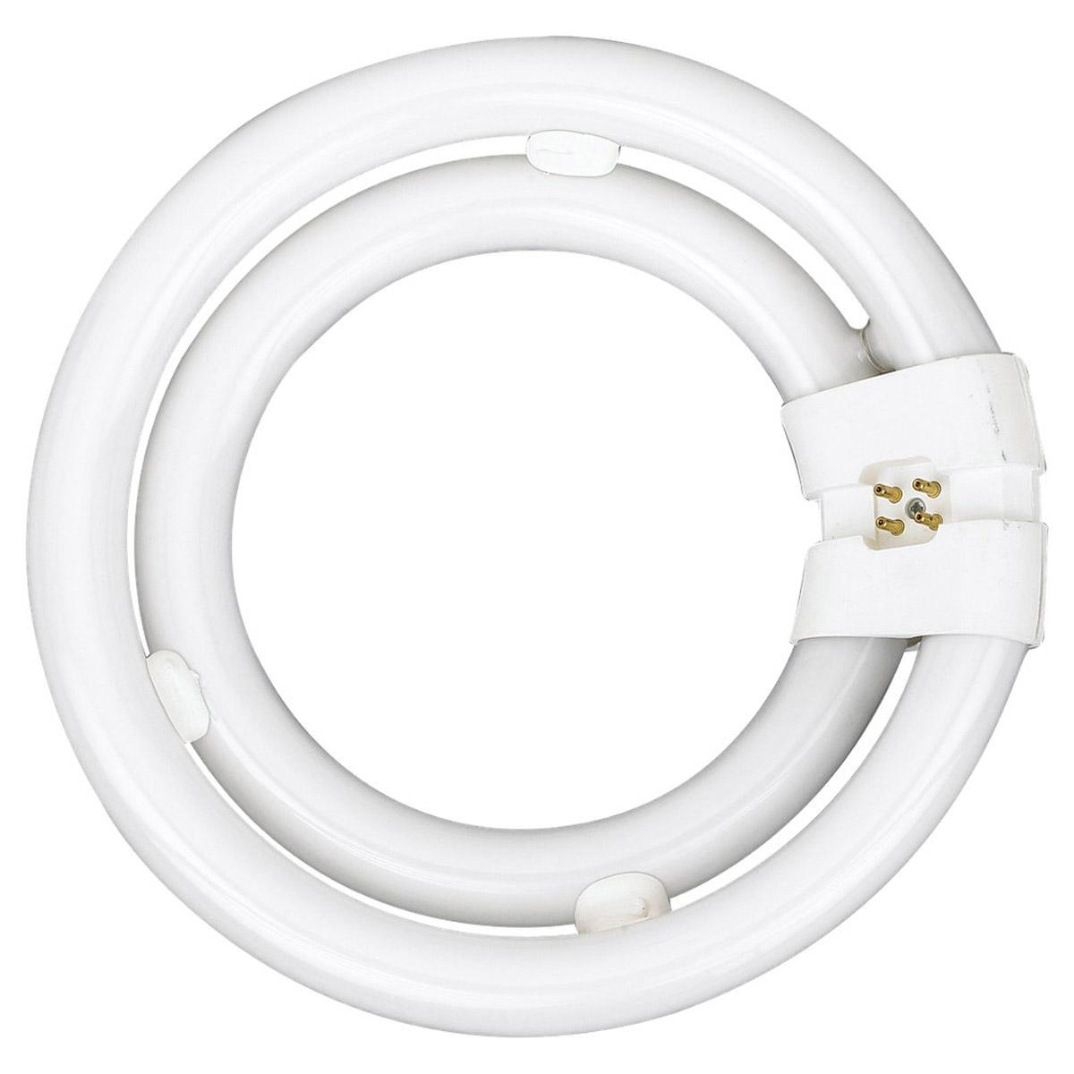 Sea Gull Lighting 2C55 - Double Circline Fluorescent Bulb 97043