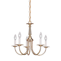 Signature 5 Light 19 inch Polished Brass Chandelier Ceiling Light