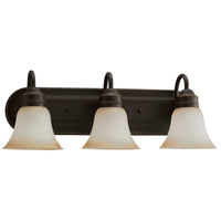 Sea Gull 44852-782 Gladstone 3 Light 24 inch Heirloom Bronze Bath Vanity Wall Light in Smokey Amber Glass