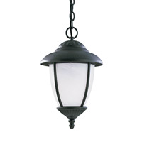 Yorktown 1 Light 10 inch Forged Iron Outdoor Pendant