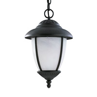 Yorktown 1 Light 10 inch Black Outdoor Pendant