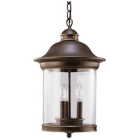 Sea Gull Lighting Hermitage 3 Light Outdoor Pendant in Antique Bronze 60081-71