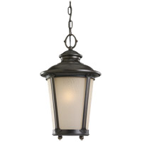 Cape May 1 Light 11 inch Burled Iron Outdoor Pendant