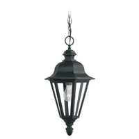 Sea Gull 6025-12 Brentwood 1 Light 10 inch Black Outdoor Pendant in Standard