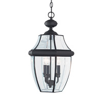 Sea Gull 6039EN-12 Lancaster 3 Light 12 inch Black Outdoor Pendant