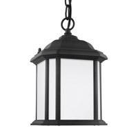 Sea Gull 60529-12 Kent 1 Light 7 inch Black Outdoor Pendant