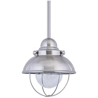 Sebring LED 8 inch Brushed Stainless Outdoor Mini Pendant
