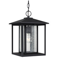 Sea Gull 62027-12 Hunnington 1 Light 9 inch Black Outdoor Pendant