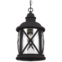 Lakeview 1 Light 8 inch Black Outdoor Pendant in Clear Seeded Glass