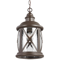 Lakeview 1 Light 8 inch Antique Bronze Outdoor Pendant in Clear Seeded Glass