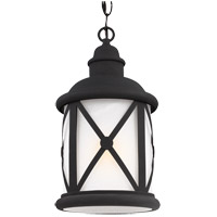 Lakeview 1 Light 8 inch Black Outdoor Pendant in Etched Seeded Glass