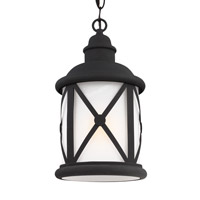 Lakeview 1 Light 8 inch Black Outdoor Pendant