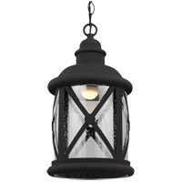 Lakeview 8 inch Black Outdoor Pendant
