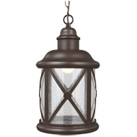 Lakeview 8 inch Antique Bronze Outdoor Pendant