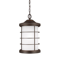 Sauganash 1 Light 10 inch Antique Bronze Outdoor Pendant in Standard
