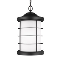 Sauganash 1 Light 10 inch Black Outdoor Pendant