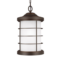 Sauganash 1 Light 10 inch Antique Bronze Outdoor Pendant