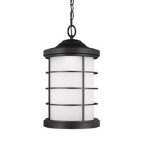 Sauganash LED 10 inch Black Outdoor Pendant