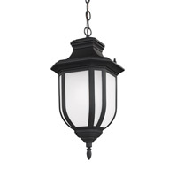 Childress 1 Light 9 inch Black Outdoor Pendant