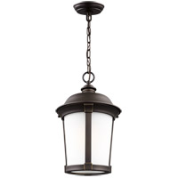 Sea Gull 6250701EN3-71 Calder 1 Light 10 inch Antique Bronze Outdoor Pendant