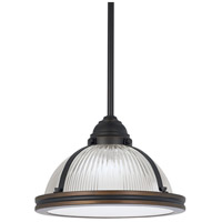 Pratt Street Prismatic 1 Light 11 inch Autumn Bronze Pendant Ceiling Light in Fluorescent