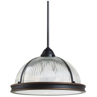 Sea Gull Lighting Pratt Street Prismatic Fluorescent 3 Light Pendant in Autumn Bronze 65062BLE-715