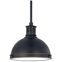 Sea Gull 65085BLE-715 Pratt Street Metal 1 Light 10 inch Autumn Bronze Pendant Ceiling Light in Fluorescent