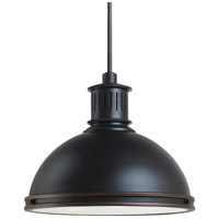 Sea Gull Lighting Pratt Street Metal Fluorescent 3 Light Pendant in Autumn Bronze 65087BLE-715