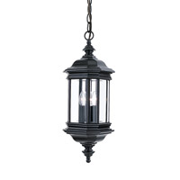 Hill Gate 3 Light 9 inch Black Outdoor Pendant