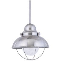 Sea Gull 6658-98 Sebring 1 Light 17 inch Brushed Stainless Outdoor Pendant