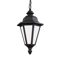 Sea Gull 69025EN3-12 Brentwood 1 Light 10 inch Black Outdoor Pendant