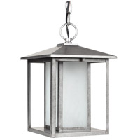seagull-lighting-hunnington-outdoor-pendants-chandeliers-69029ble-57