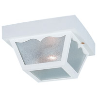 Signature 2 Light 10 inch White Outdoor Ceiling Fixture