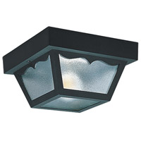 Signature 2 Light 10 inch Clear Outdoor Ceiling Fixture in Black