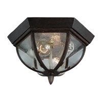 Sea Gull Lighting Ardsley Court 2 Light Outdoor Ceiling Fixture in Textured Rust Patina 78136-08