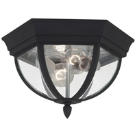 Sea Gull Lighting Bakersville 2 Light Outdoor Ceiling Fixture in Black 78136-12