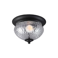 Sea Gull Garfield Park 1 Light Outdoor Flush Mount in Black 7826401BLE-12